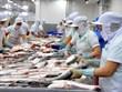 针对美国征收越南查鱼反倾销税越南提出磋商请求 正式启动争端解决程序