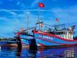 承天顺化省渔民遵守远洋渔业规定