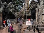 越南旅游占旅柬埔寨国际游客总数的20%