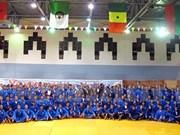 2015年越武道世界锦标赛展示越南文化精华