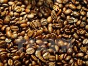 越南大叻咖啡在美国星巴克连锁店系统上柜销售
