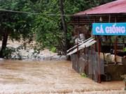 越南北部各省连日暴雨造成12人死亡和受伤