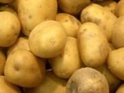 越南是新西兰土豆出口的潜力市场