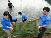 越南岘港市与老挝沙拉湾省进一步加强青年工作交流与合作
