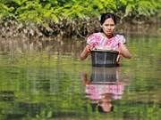 东盟帮助缅甸抗洪灾