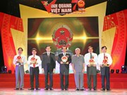 """越南国家主席张晋创出席2015年""""光荣越南""""活动"""