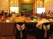 """""""携手应对自然灾害""""国际研讨会在岘港市召开"""