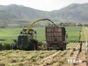 加强农业与农村发展的机制建设与资源投入