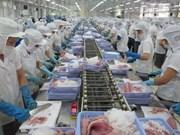 越南对非洲和中东大米出口量增长52%以上