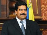 委内瑞拉总统对越进行正式访问有助于加强越委合作