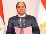 埃及致力加强同东盟各领域合作