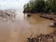 有关应对红河平原自然灾害和气候变化研讨会在宁平省举行