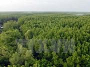 德国协助越南保护森林生态系统