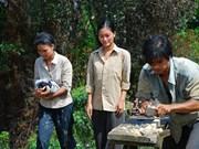 影片《一望无际的田野》受到国际公众的关注
