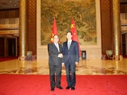越南政府副总理阮春福与中国国务院副总理张高丽举行会谈