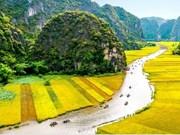 越南各地千姿百态