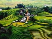 最受外国游客青睐的越南景点