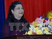 越南国会副主席丛氏放会见旅俄越南人社群
