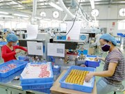 胡志明市各工业区和加工区有效运营