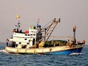 越南海警在金瓯海域扣押非法捕鱼的三艘泰国渔船