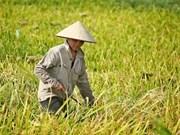 越南农业产业应进行根本性改革实现农业可持续发展