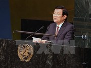 何金玉副外长:越南继续坚持致力于和平、合作与发展的外交路线