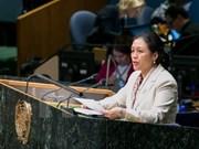 阮芳娥大使:越南注重以人为中心尊重和保障人权