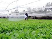越南需进一步完善农业领域的招商引资政策