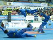 2015年第23届越武道锦标赛在清化省开赛