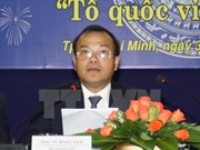 越南副外长武宏南:越南党和国家十分关注旅外越侨