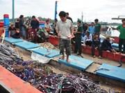 越南渔业工会强烈反对中国渔政船攻击越南渔船和掠夺船上财产