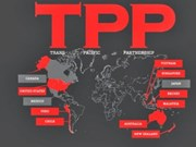 TPP—区域合作的新动力