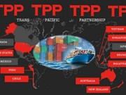 TPP为越南企业增长的助推器