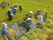 打破农村贫困恶性循环
