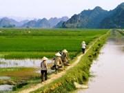 TPP和越南农业的发展动力
