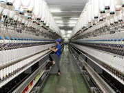 德国媒体:越南成为各项区域贸易协定的重要交叉点