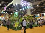 越南旅游业主动融入东盟共同体