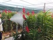 加入TPP越南农产品和劳务市场将迎来诸多机遇和挑战