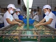 欧盟随时助推越南走近其市场