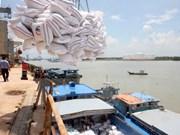 2015年越南大米出口量有望达到650万吨