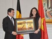 比利时大力资助越南巴地头顿省做好废物处理工作