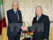 胡志明市领导会见意大利总统塞尔焦·马塔雷拉