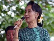 缅甸民盟领袖昂山素季重新当选下议院议员