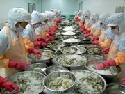 越南平顺省吸引投资项目共有1156个投资总额为70亿美元