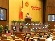 越南地十三届国会第十次会议:大力推进经济结构调整提升劳动生产率