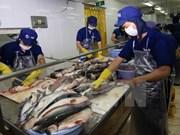 越南对中国查鱼出口量猛增