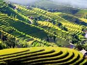 胡志明市加大投入西北地区各省旅游业力度
