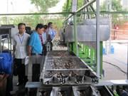2015年越南腰果加工设备展览会和研讨会在隆安省举行