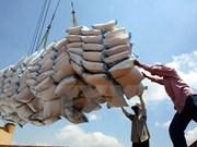 10月份越南大米出口量环比增长84%