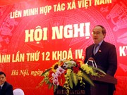 越南农业结构重组进程的最重要主体是新型合作社